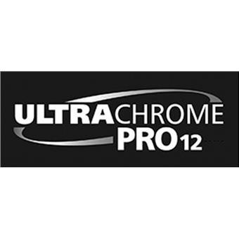 Singlepack Orange T44QA40 UltraChrome PRO 12 350ml